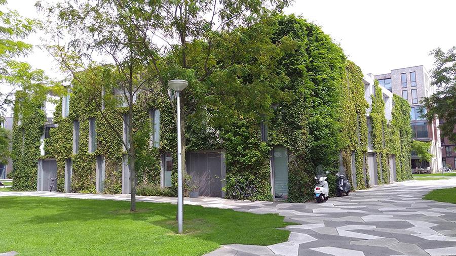 green_facade_1